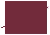 logo-dmgs-about